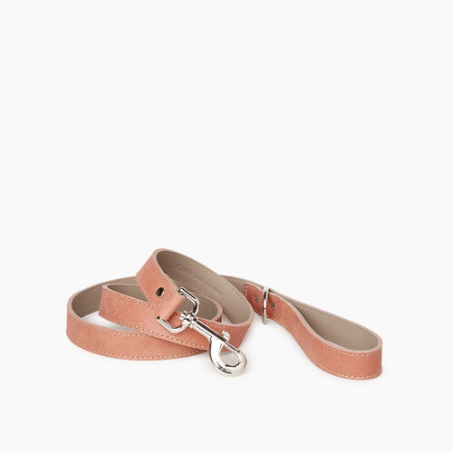 Roots-New For January Dog Accessories-Leather Dog Leash-Canyon Rose-A