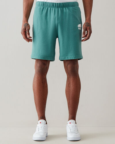 Roots-Sweats Sweats Shorts-Cooper Park Short 8 In-Blue Spruce-A