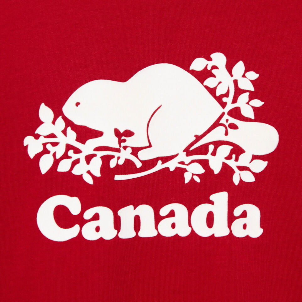 Roots-Kids Our Favourite New Arrivals-Boys Canada T-shirt-Sage Red-D