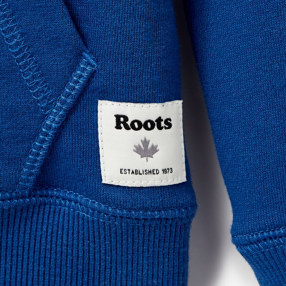 Roots-Kids Our Favourite New Arrivals-Boys Patches Full Zip Hoody-Active Blue-C