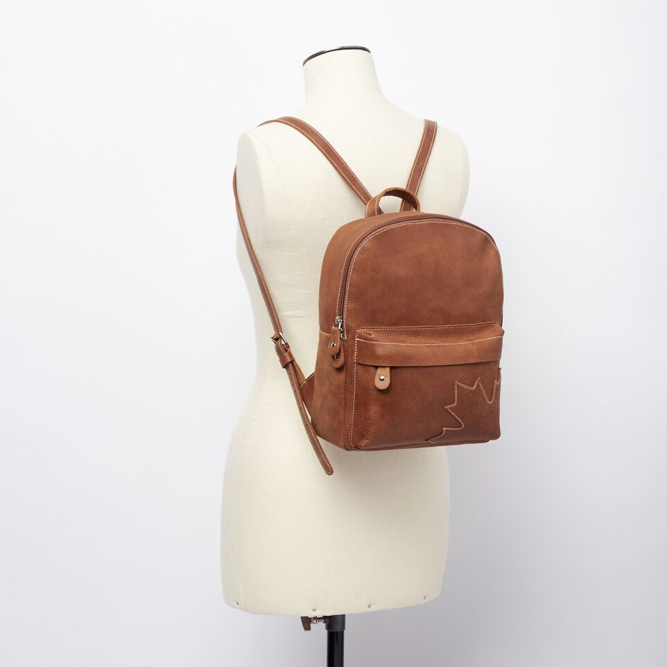 Roots-undefined-Trans Canada Backpack Tribe-undefined-B