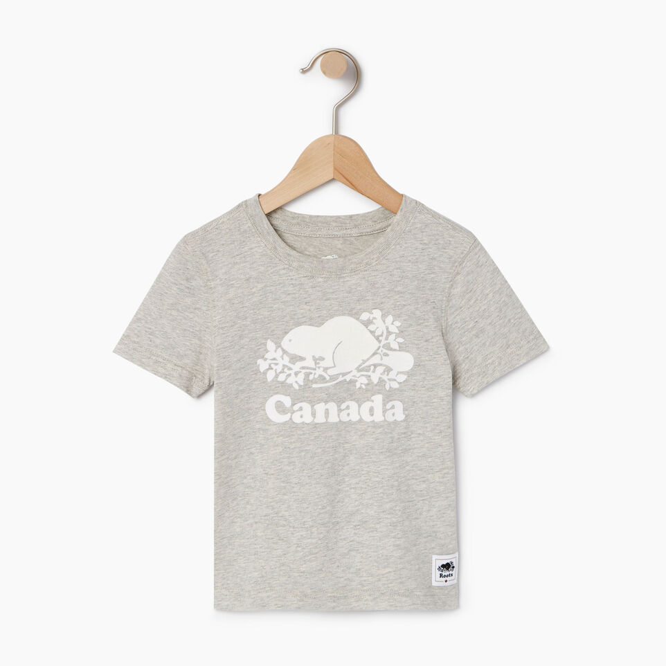 Roots-Kids Canada Collection-Toddler Canada T-shirt-Grey Mix Pepper-A
