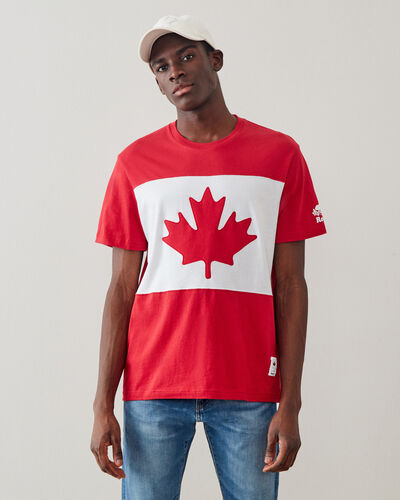 Roots-Men Graphic T-shirts-Mens Blazon T-shirt-Sage Red-A
