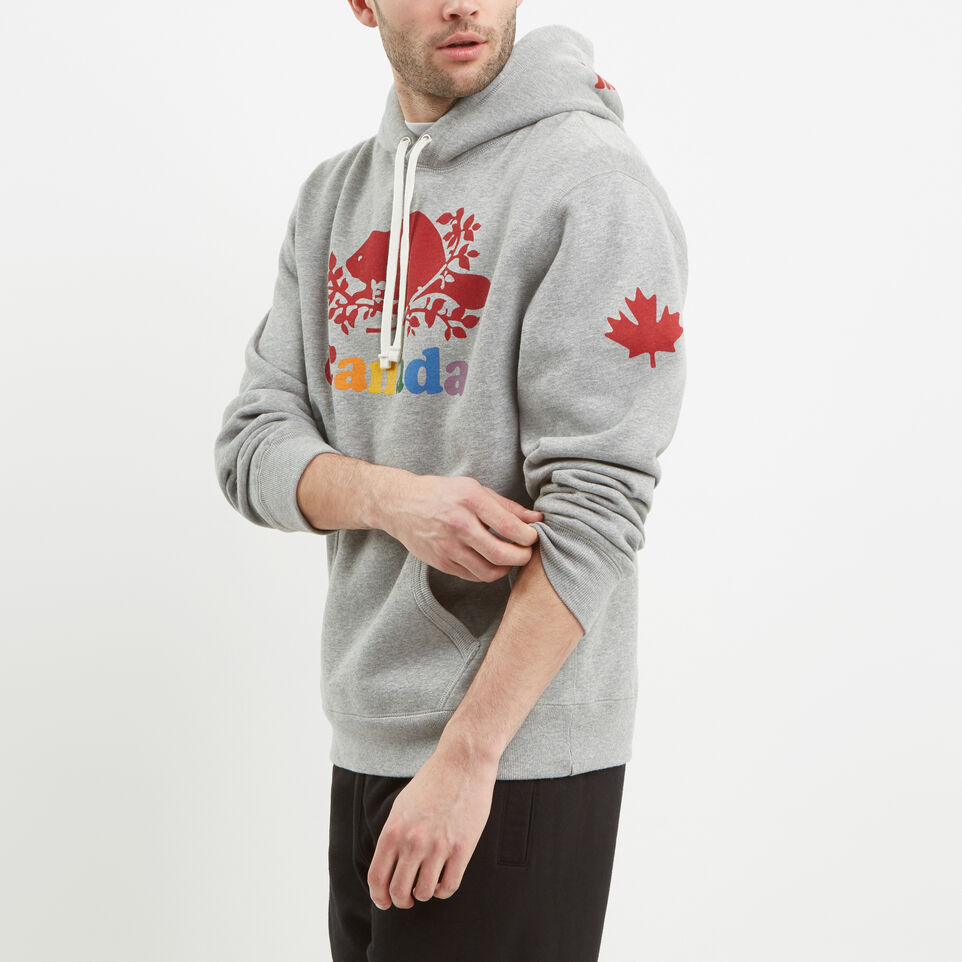 Roots-undefined-Mens Cooper Canada Hoody-undefined-B