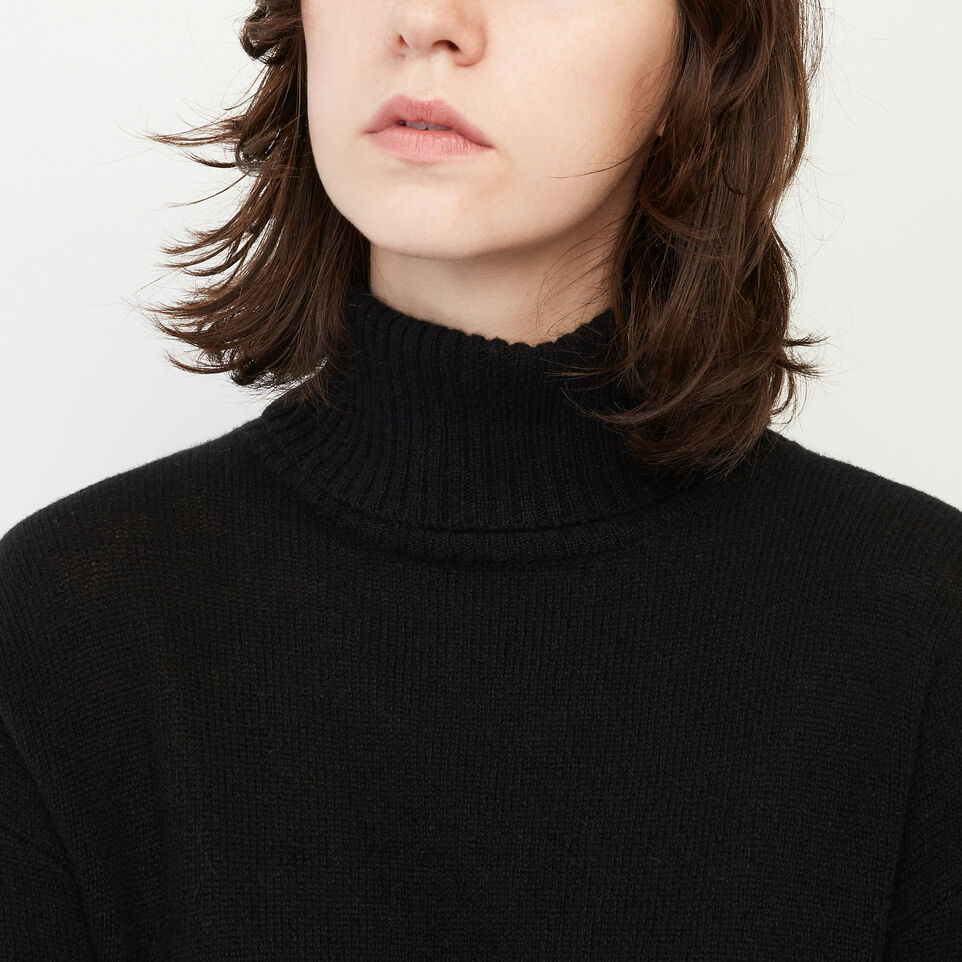 Roots-undefined-Sherbrooke Turtleneck Sweater-undefined-E