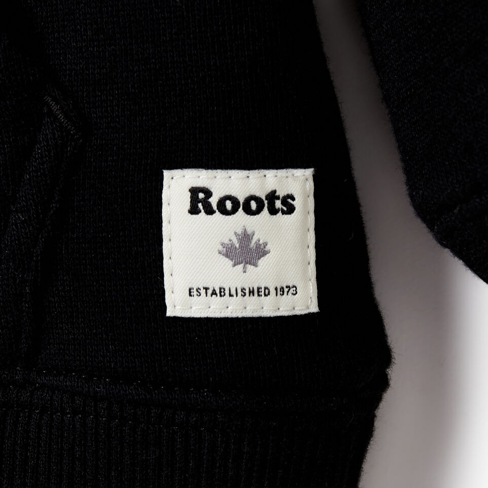 Roots-undefined-Toddler 2.0 Colourblock Raglan Hoody-undefined-C