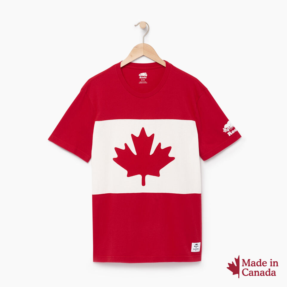 Roots-Men Canada Collection By Roots™-Mens Blazon T-shirt-Sage Red-A