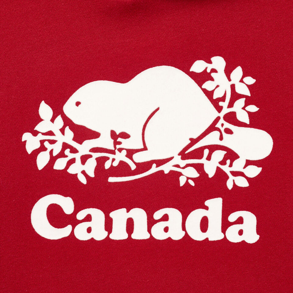 Roots-Kids Our Favourite New Arrivals-Boys Canada Kanga Hoody-Sage Red-D