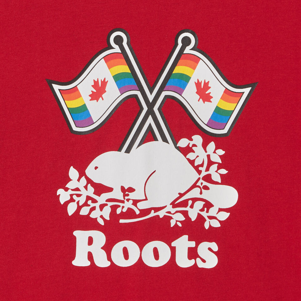 Roots-undefined-Boys Roots Pride T-shirt-undefined-C