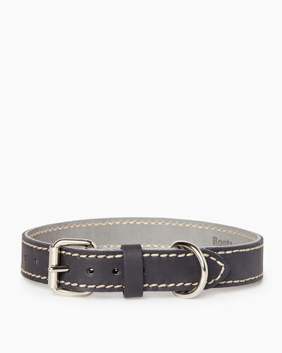 Roots-New For March Dog Accessories-Medium Leather Dog Collar-Jet Black-A