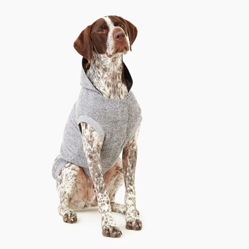 Roots-New For November Roots X Canada Pooch®-Pooch Salt and Pepper Hoody Size 24-Salt & Pepper-A