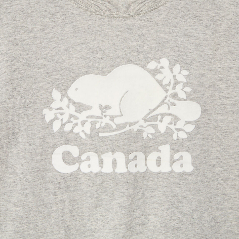 Roots-Kids Our Favourite New Arrivals-Boys Canada T-shirt-Grey Mix Pepper-D