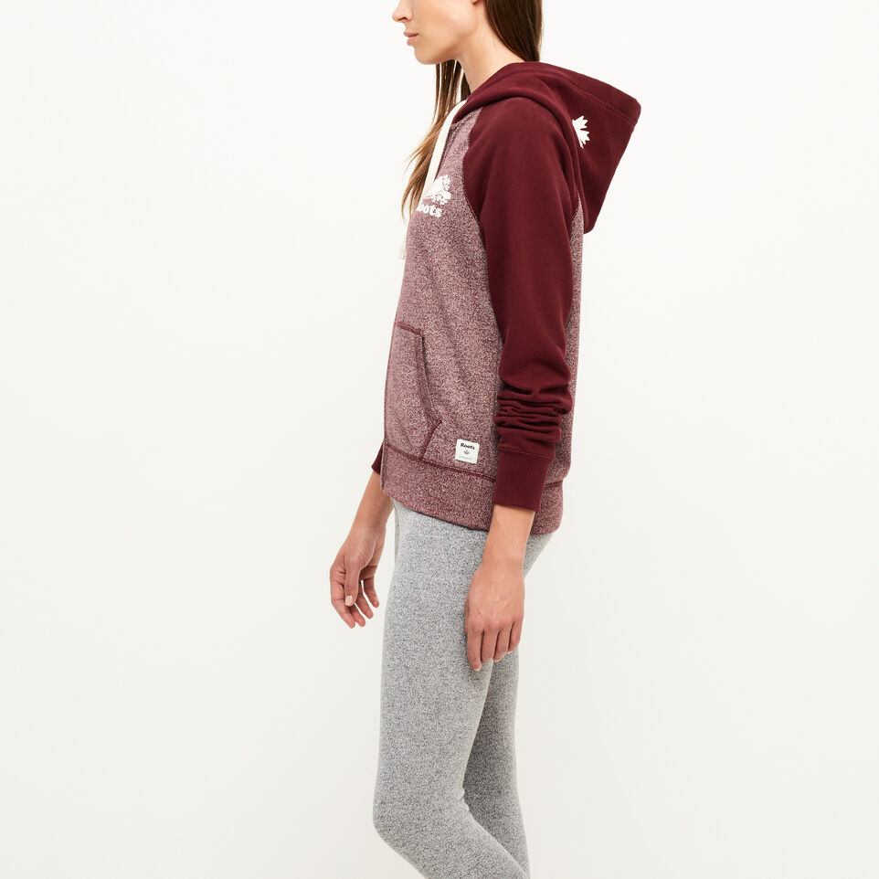 Roots-undefined-Colour-blocked Zip Hoody-undefined-C