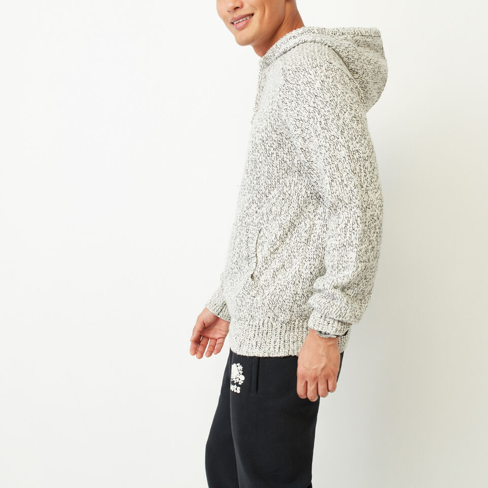 Roots-undefined-Snowy Fox Hoody-undefined-C