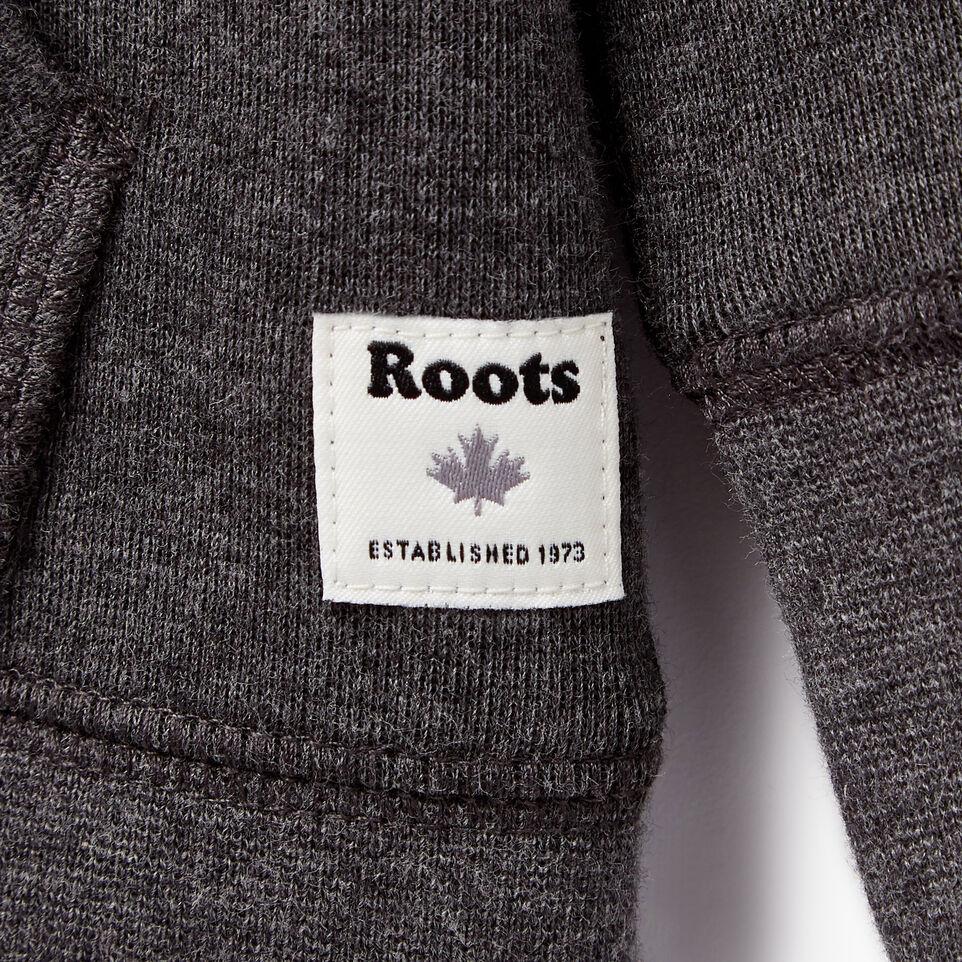 Roots-Kids Our Favourite New Arrivals-Toddler Roots Speedy Full Zip Hoody-Charcoal Mix-C