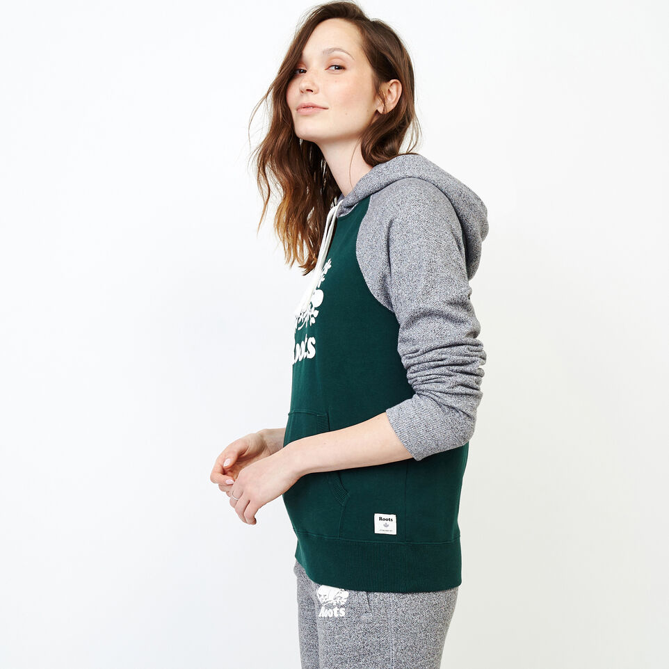 Roots-undefined-Colour blocked Kanga Hoody-undefined-C