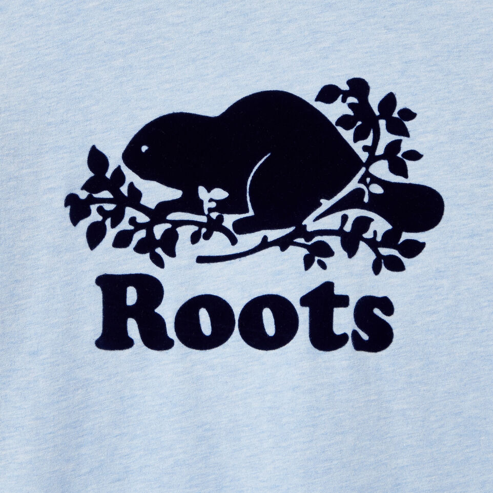 Roots-Kids Our Favourite New Arrivals-Boys Cooper Beaver Raglan T-shirt-Baby Blue Mix-D