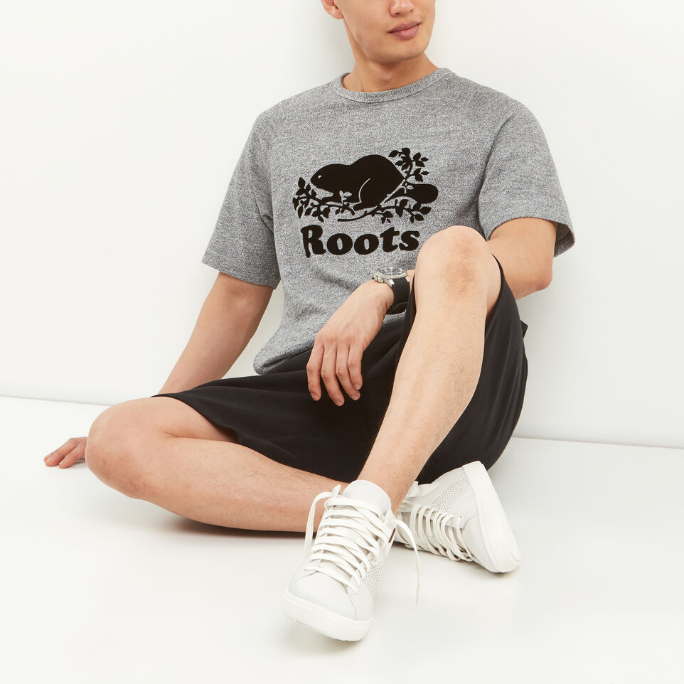 Roots-Salt and Pepper Short Sleeve Crew